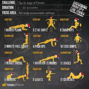 12 day fitness
