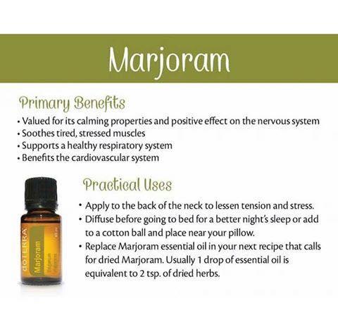 marjoram-uses