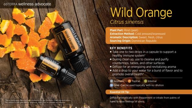 wild-orange