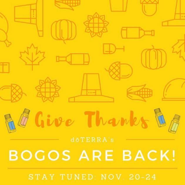 bogos back