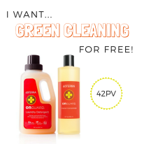 FREE GREEN CLEANING