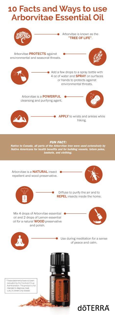 arbo ways to use