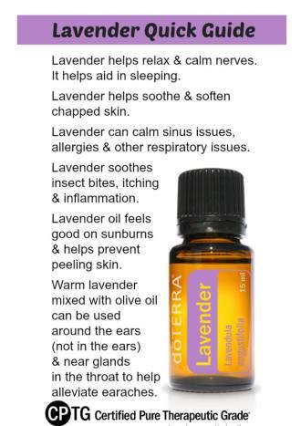 day 1 lavender b