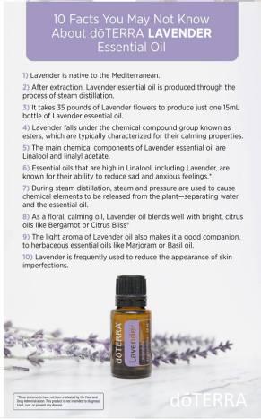 day 1 lavender